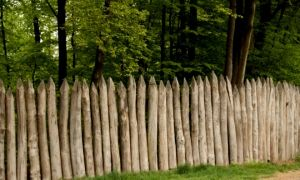 Забор частокол